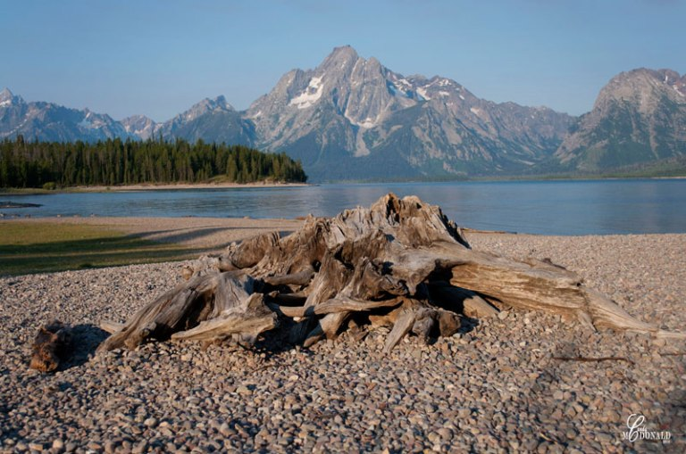 Beach-on-Jackson-Lake-Colter-Bay-Campground