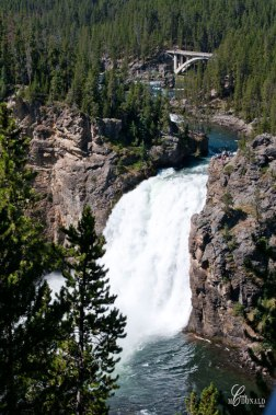 Grand-Canyon-of-Yellowstone-Falls