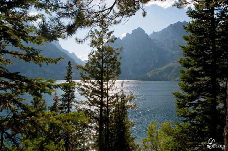 Jenny-Lake-(2)