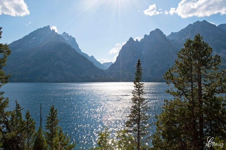 Jenny-Lake