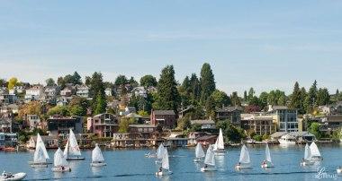 A-regatta-of-pleasure-boaters