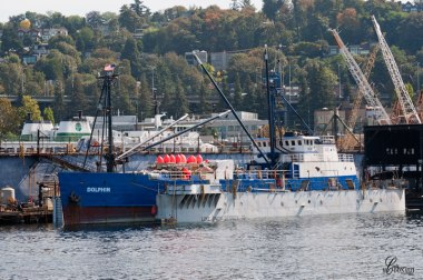 Boat-in-dry-dock