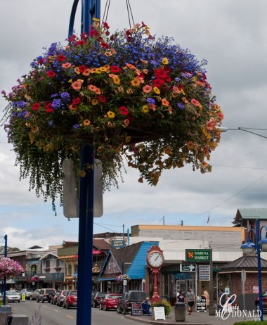 Flower-baskets-in-Poulsbo