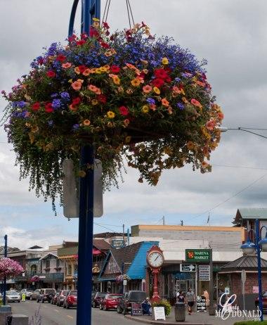 Flower-baskets-in-Poulsbo
