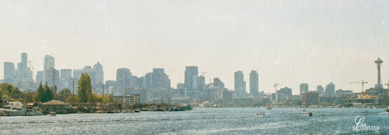 Skyline-from-north-end-of-lake-filtered