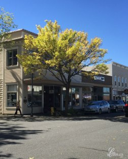 fall-in-downtown-edmonds