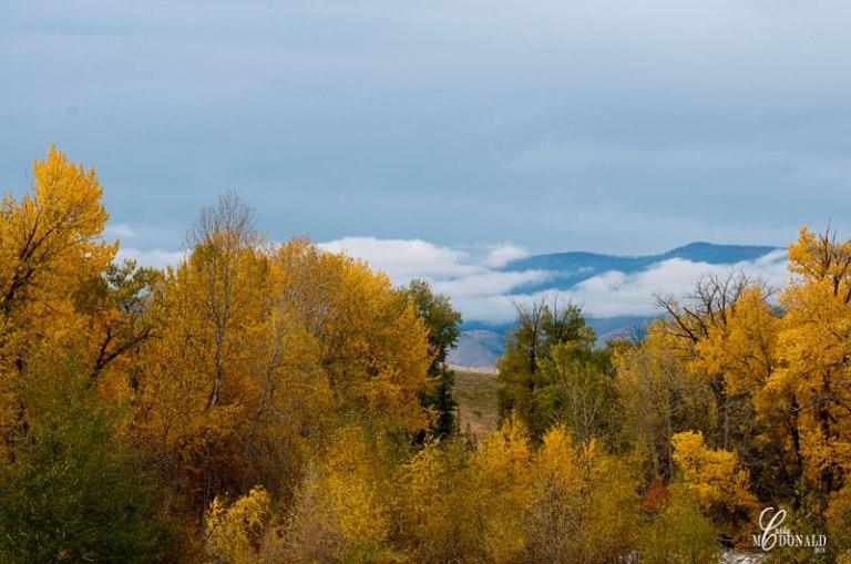 fall-in-montana