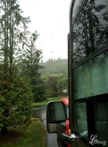 Gloomy-day