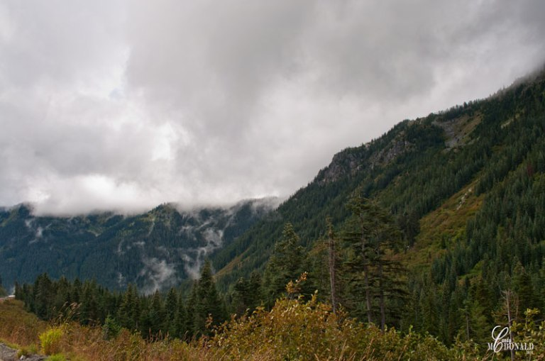 Low-clouds-over-Stevens-Pass