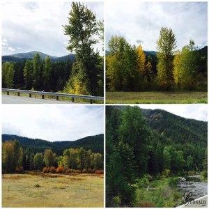 montana-fall-color