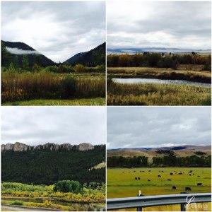 montana-gray-weather