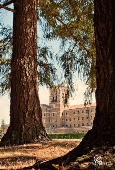 st-edward-seminary-filtered
