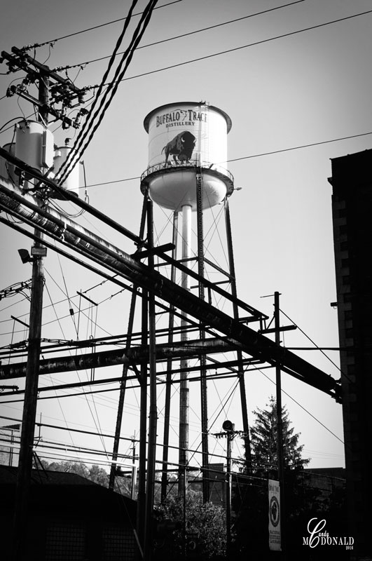 buffalo-trace-water-tower-bw