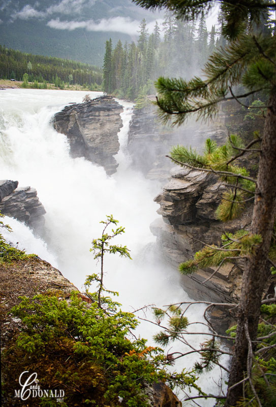 Athabasca Falls on a rainy day 3