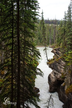 Athabasca Falls on a rainy day 7