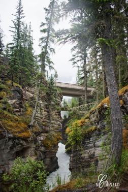 Athabasca Falls on a rainy day 9