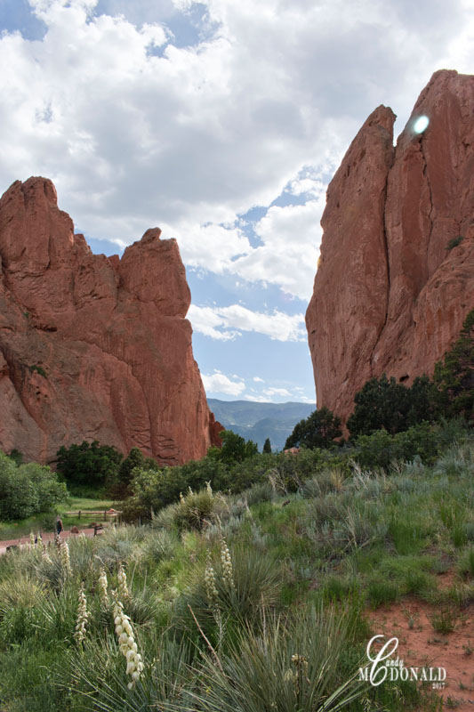 Garden of the Gods 8