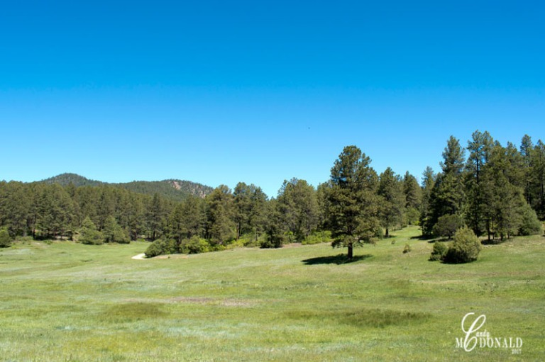 High Road to Taos 3
