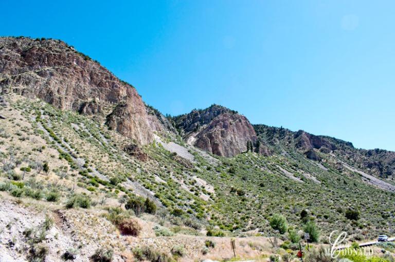 Low Road to Taos