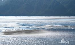 Anchorage DSC_0062