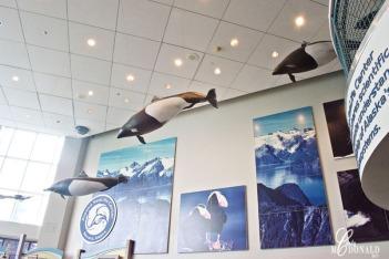 Aquarium DSC_0081