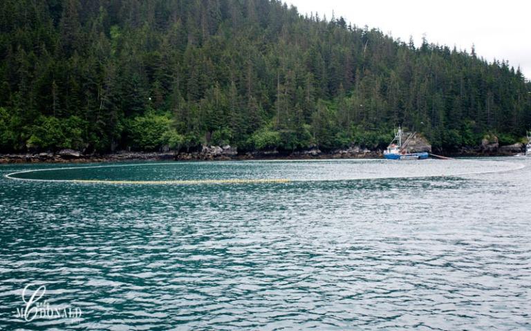 Boat tour 8