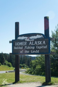 Homer DSC_0058