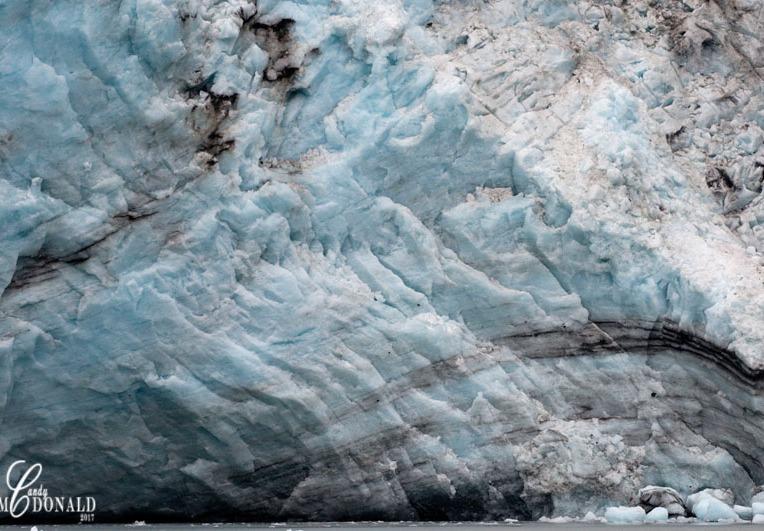 Meares Glacier DSC_0142