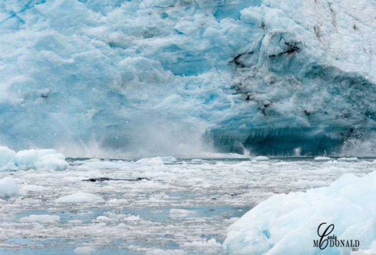 Meares Glacier DSC_0211