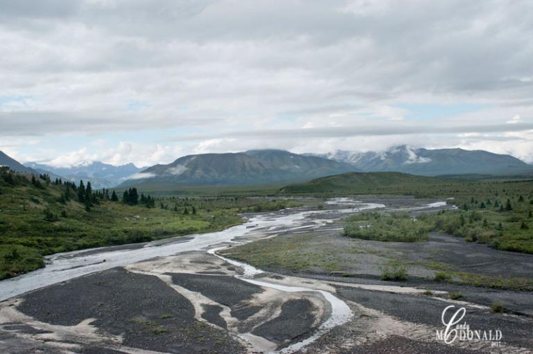 Tundra tour DSC_0081