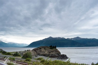 Turnagin Arm off Seward HwyDSC_0005