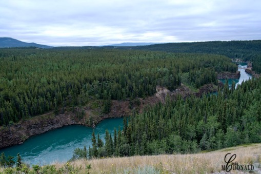 Yukon River Miles Canyon overlook