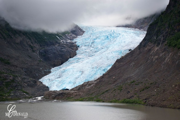 Bear Glacier DSC_0028