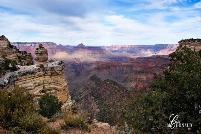 Canyon DSC_0126
