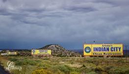 Williams to Albuquerque DSC_0008