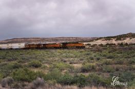 Williams to Albuquerque DSC_0011