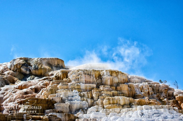 Mammoth Hot Springs DSC_0066