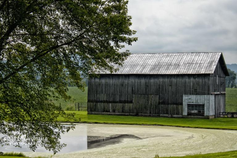 Old Barn DSC_0011