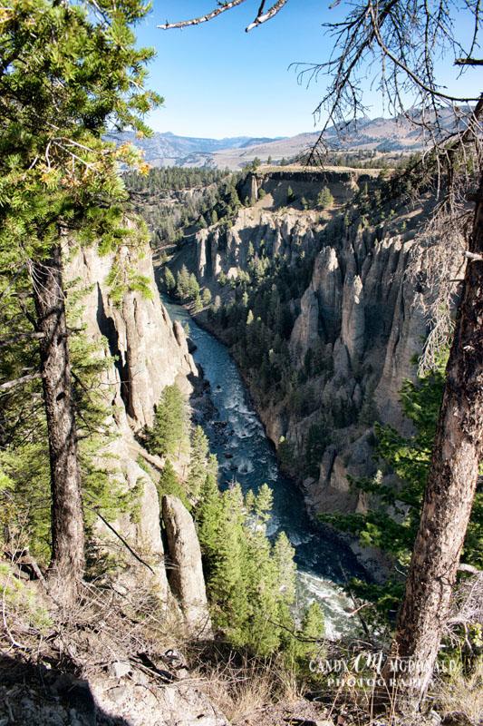 Yellowstone DSC_0033