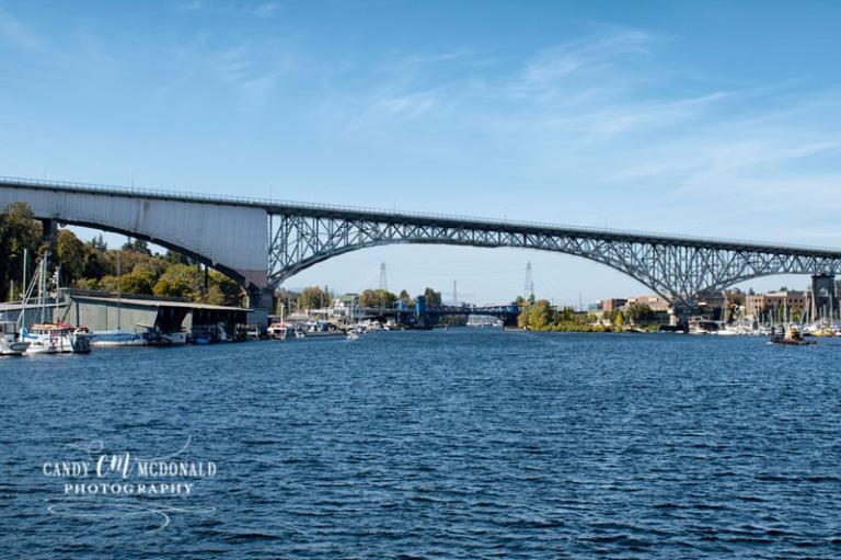 Fremont bridge DSC_0017