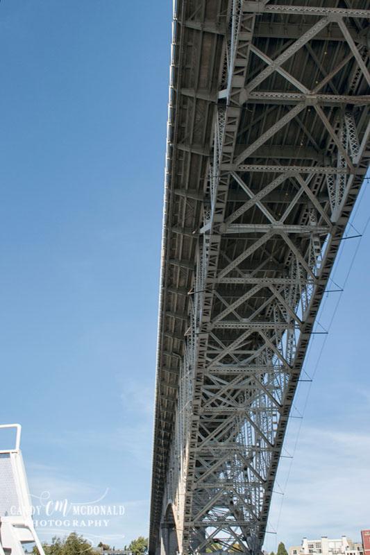 Fremont bridge underside DSC_0022