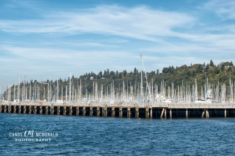 Shilshole marina DSC_0135