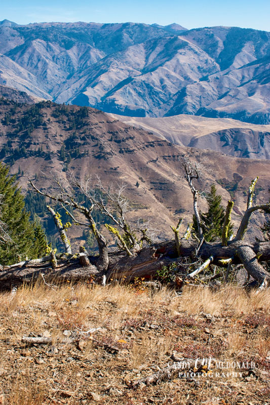 Hells Canyon DSC_0006