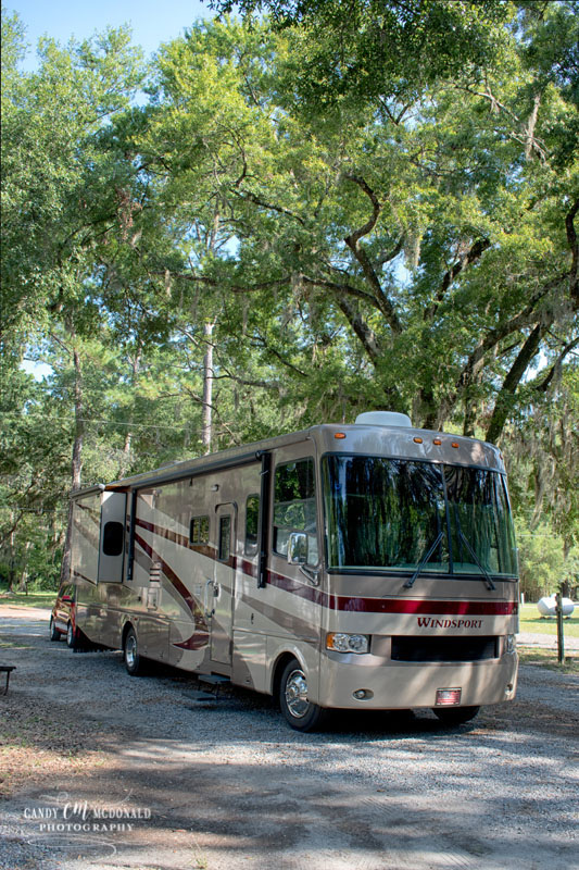 Motorhome in campsite at Savannah Oaks RV Park