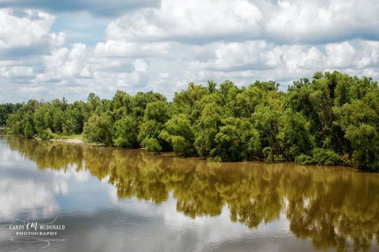 Atchafalaya Basin swamp reflections