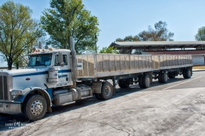 Truck carrying load of onions parked at rest area