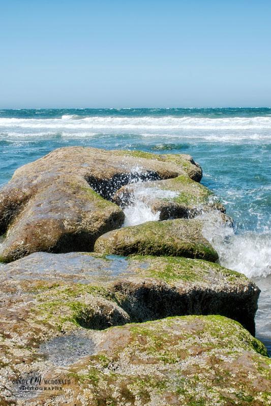Waves break onto algae covered rocks alongside beach
