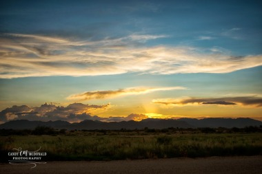Desert sunset in Willcox, AZ